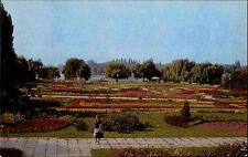 Bucarest Romania București Romania Valacchia 1976 AK Park Parco PIANTE IMPIANTO