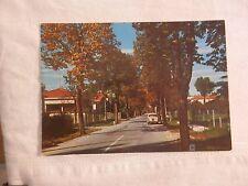 Vecchia foto cartolina d epoca di Azzano decimo viale strada alberi abitazioni