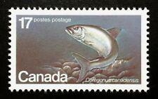 Canada #853 MNH, Endangered Wildlife - Atlantic Whitefish Stamp 1980