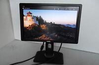 "Dell P1913 19"" Wide Black LCD Monitor VGA DVI DP 1440x900 w/2-Port USB Hub PVGRC"