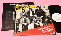 ANIMALS LP BEFORE ... ORIG JAPAN NM AUDIOFILI INSERTO