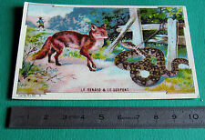 CHROMO IMAGE BON-POINT 1925-1930 FABLE LE RENARD LE VOYAGEUR ET LE SERPENT