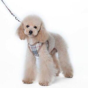 WOW! DOG - PUPPY rare 'Designer' HARNESS & LEAD SET - (NOT) Burberry - UK SELLER