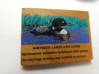 NORTHERN LAKES LOON  VINTAGE WOOD HAT BUTTON PIN  PROTECT PROTEST COLLECTOR