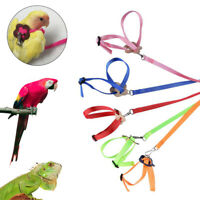 Outdoor Adjustable Training Rope Pet Strap Band Parrot Leash Bird Harness Supply