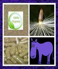 CAPSULE di semi di Cardo Mariano-PURE Vegan Organic Sourced FEGATO SANO purificare