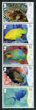 British Virgin Islands BVI 2017 MNH Underwater Life Pt 2 Fish 5v Strip Stamps