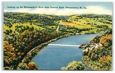 Mid-1900s Monongahela River from Dorseys Knob, Morgantown, WV Postcard