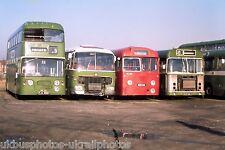 Crosville FJA196D, NFM681E, MUH146, HFM186J Chester 20/01/74 Bus Photo