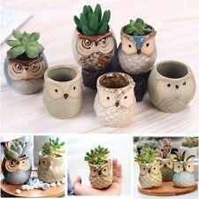 2.5 Inch Owl Pots Little Ceramic Succulent Flower Bonsai Window Planters Pots