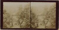 Parc Montagne Foto Stereo Amateur Th2n9 Vintage Citrato c1900