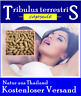 150 Kapseln Pure Tribulus Terrestris 500mg Testosteron Booster Gokshura