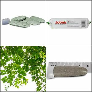 Jobe's Tree Fertilizer Spikes, Feed Trees At The Roots, No Mess 16-4-4,15 Spikes