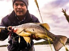 Murray Cod Fishing Lure Yellowbelly Barra Bass Perch Jacks Redfin Spinnerbait.
