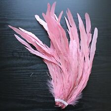 """25 pcs 12-14"""" long Baby Pink Rooster COQUE tail Feathers for crafting, NEW"""