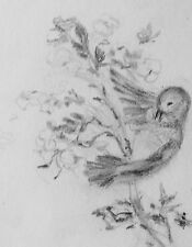 AUDREY KERMODE - DOVE -  ORIGINAL GRAPHITE DRAWING - FREE SHIP IN US !!!
