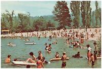 Lake Arrowhead Village Beach Swimmers Crowd Scene CA Vtg Petley Postcard