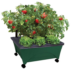 Patio Raised Garden Bed Grow Box Green w/ Watering System on Wheels 24 x 20 in.