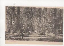 Spanjaarslaan Haarlem Netherlands Vintage U/B Postcard 505b
