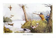 FOWL SHOOTING, DUCK HUNTING, COLOR SPORTING PRINT, WILD FOWL HUNT, DOGS SPANIEL
