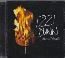 IZZI DUNN - the big picture CD