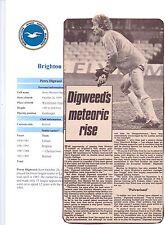 Perry Digweed Brighton & Hove Albión 1981-1993 Original Firmada A Mano Imagen