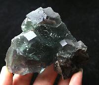 286.6g  NATURAL Green.Blue FLUORITE Quartz Crystal Cluster  Mineral Specimen