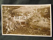 Postcard RPPC Flower Show Tropical Plants Pagoda Gazebo J W Taylor Vintage