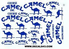 decals decalcomanie  divers camel tout bleu 1/12