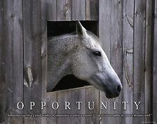 Horse Motivational Poster Art Western Decor Cowboy Rodeo Saddle Spurs MVP232