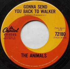 *THE ANIMALS Gonna Send You Back../Baby Let Me CANADA 1964 ORIG CAPITOL SWIRL 45
