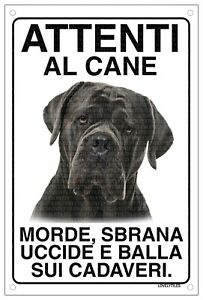 CANE CORSO Attenti al cane morde sbrana uccide e balla sui cadaveri 15x20