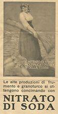 W6049 Nitrato di Soda - Concime - Pubblicità 1930 - Advertising
