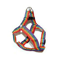 Pride Shack - Rainbow Small Pet - Cat, Dog Harness for Leash Gay & Lesbian Pride