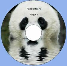 Panda Bear Animal images Pictures Art & Craft CD Rom