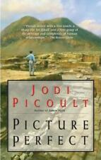Picture Perfect by Jodi Picoult (2002, Trade Paperback)