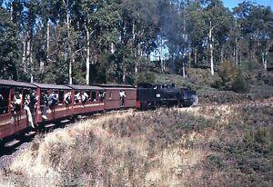 Victorian Railways Steam G 42 Bye Bye Beechie Tour Climbing Towards Banool 1962
