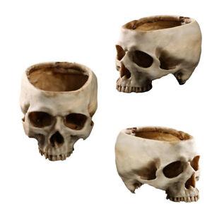Gothic Human Skull Planter Flower Pot Home Office Bar Plant Decor Flowerpot Bowl