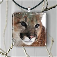 COUGAR HEAD IN WINTER SQUARE PENDANTS NECKLACE MEDIUM OR LARGE mw3v5h