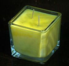 90hr Double Wick CITRONELLA & SCOTCH PINE Triple Scented Soy SQUARE GLASS CANDLE