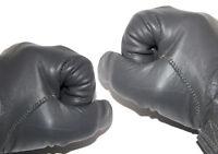 BW Lederhandschuhe mit Futter Bundeswehr Handschuhe gefüttert S-XXL schwarz grau