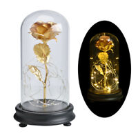 WR 24K Gold Foil Plated Rose Flower In Glass Dome LED Light Wedding Party Decor