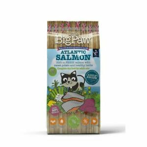 Little Big Paw Atlantic Salmon Complete Adult Cat 1.5kg - 261172