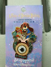 Disney splash mountain pin
