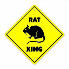 Rat Crossing Decal Zone Xing animals rodent trap criminal gray vermin rats