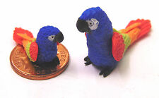 1:12 Scale Large & Small Blue Clay Parrots Dolls House Miniature Exotic Bird P3
