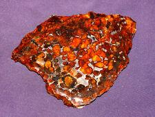 Meteorit Pallasit Sericho Kenia Scheibe poliert, versiegelt 109x81x6mm 80,1g