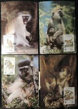 st kitts 1986 Wwf green monkey maxicard animals apes mammals superb used