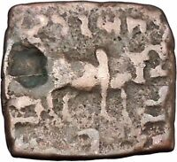 PILOXENOS 125BC Indo Greek Kingdom of India TYCHE BULL Ancient Coin i47077