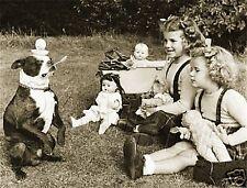 BOSTON TERRIER CHILDREN DOLLS VINTAGE CANVAS PHOTO ART